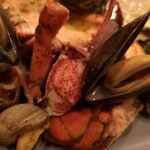 ヴァプール - ツブ貝とロブスター