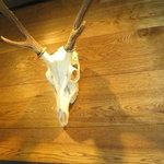 バレットカフェ - お店のカウンターの上には本物の鹿のスカルがあります。