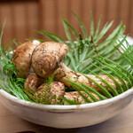 緒方 - 和歌山県富貴の松茸
