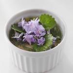 E.Bu.Ri.Ko - 山野草のムース、カキドオシの花と