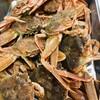 エノテカラウラ - 料理写真:香箱蟹