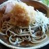 手打ちそば 徳川 - 料理写真:おろしそば 醤油