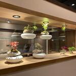 sushimatsumoto - 個室仕切り飾り棚