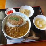 焼肉ハウスファミリー - 料理写真:ハンバーグカレー
