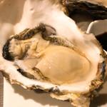 くらのあかり - 生牡蠣