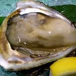 朱鯱 - 岩牡蠣(単品)