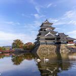 142656747 - 松本城と白鳥