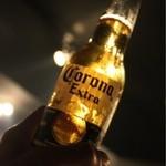 パンテラネグラ - コロナビール