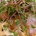 中村 玄 - 真鯛のお刺身 中国風サラダ仕立て