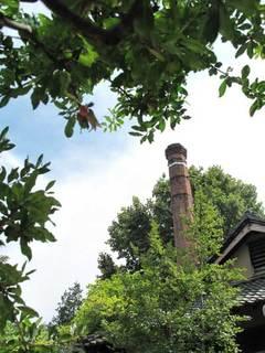 小布施堂 えんとつ - お隣の市村酒造さんの煙突