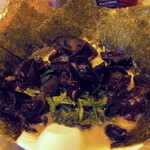 らーめん みうら家 - ラーメン太麺にほうれん草と木耳のワタクシメ定番のデフォ+海苔7枚追加です