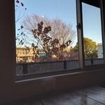 143221396 - 晴れた空と樹木