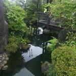 五右衛門 - 池には鯉