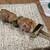 上野黒門 鳥恵 - 料理写真:媛っこ地鶏、ねぎま