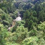 養老茶屋 - 店先より粟又の滝