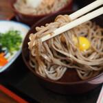 竹の家 - 麺アップ