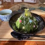 おとぎの蔵 豆の樹 - 抹茶モンブラン 豆の樹ツリー