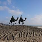 144129242 - 近くの海岸の、ラクダに乗るイケメンと彼女の像。