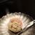 菓子のタシナミ - 料理写真:
