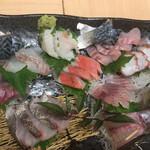 お魚sun -
