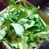 Yugafuya - 料理写真: