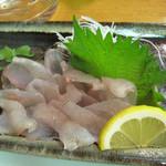 14467828 - 幻の魚ギンポのお刺身。