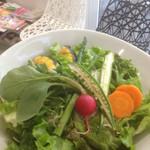 カフェ ゼッカ - 旬野菜の気まぐれサラダ