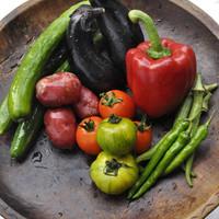 キッチン わたりがらす - 国産の元気な無農薬夏野菜