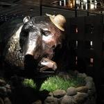 1449861 - 熊がお出迎え。