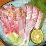 夢大陸 - 高級魚赤マチ他
