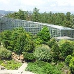 14502466 - 植物園の中庭