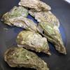 浦村カキ 英治丸 - 料理写真:殻付き 生食用(20個入) 2,000円