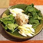 柚木元 - 野菜(ささがき牛蒡、ルッコラ、ちぢみホウレン草、葱)