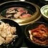 河月 - 料理写真:3500円コースの一部。肉の品数は多いです。