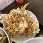 145090819 - 野菜天盛り(さつま芋・人参とゴボウのかき揚げ・玉ねぎ、長ネギ、桜えびのかき揚げ)