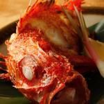銀座 田舎家 - 料理写真:北海道産きんきの塩焼き
