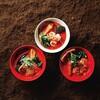 空と大地のトマト麺 Vegie  - メイン写真: