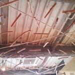 フォレスト - 天井の流木アート
