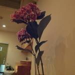 小石川 かとう - 6月某日のお花その1