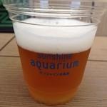 14565793 - サンシャイン水族館ビール