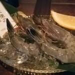 OYSTER BAR 酒肆石花 -