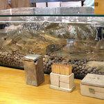 石臼挽き手打蕎楽亭 - 水槽の若鮎