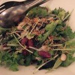 1459023 - 有機野菜のサラダ