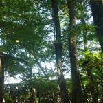 Sobadokoroshinsen - 窓際から見える景色