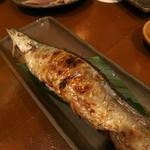jige - 新秋刀魚