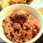 沙羅舎 心泉茶苑 - 酵素玄米ごはん