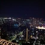Resutoranrukuwizusukairaunji - 夜景は最高です②