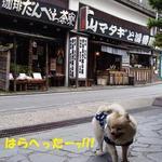 14626992 - 民芸調の喫茶店♪