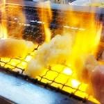 14628401 - 網の上で炎を上げるホソ(塩)
