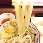 14630449 - 太めの麺